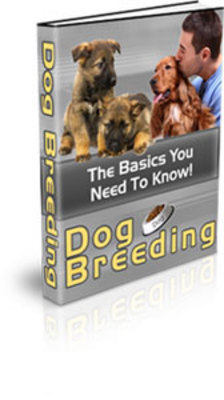Product picture New Dog Breeding (PLR) (Hot item)